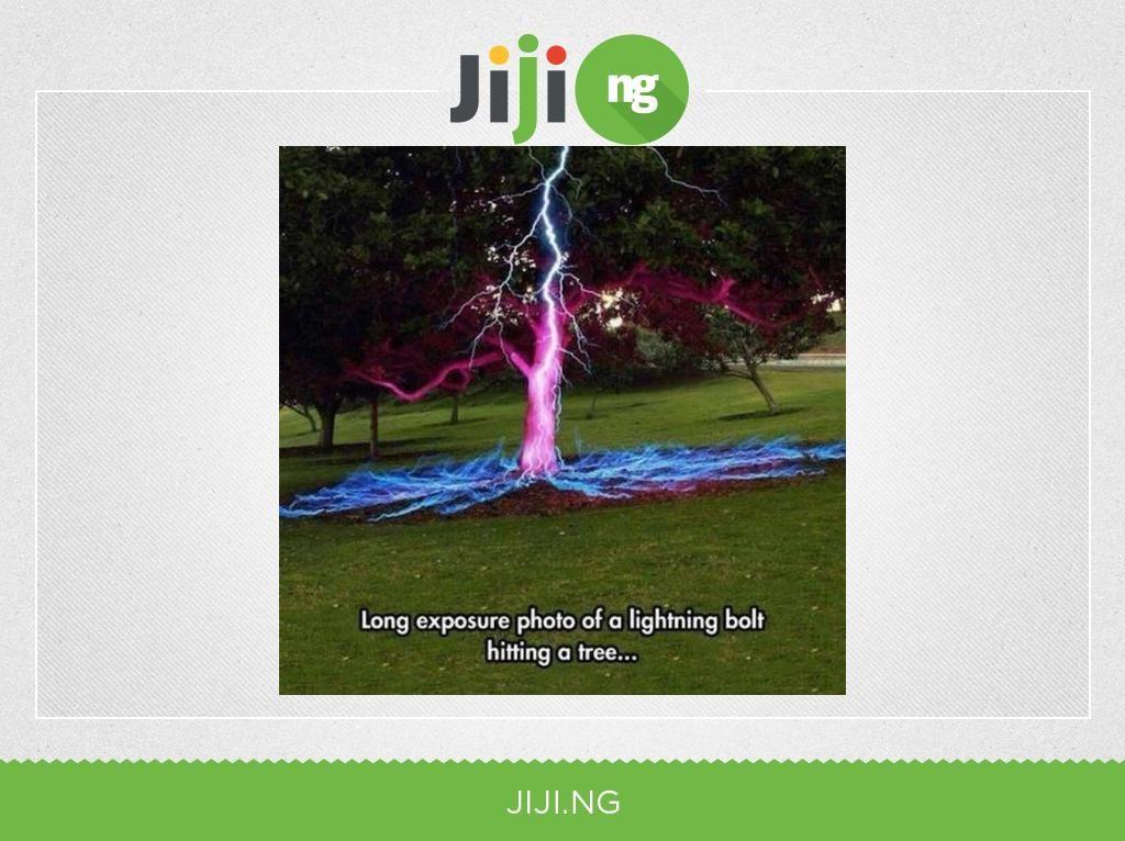 lightning struck the tree