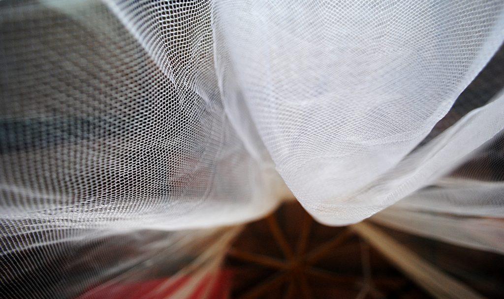 mosquito-net1