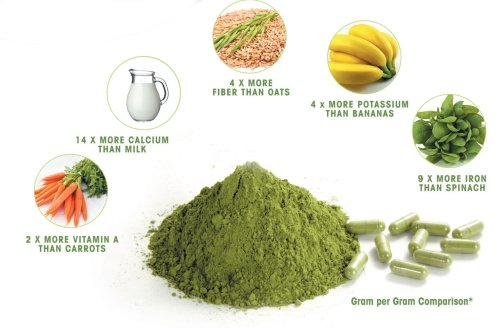 500xNxmoringa-natural-products-powder-nutrition-500x328.jpg.pagespeed.ic.tJ5lJ-olcD