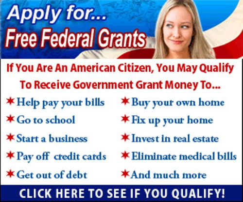 government grants 2