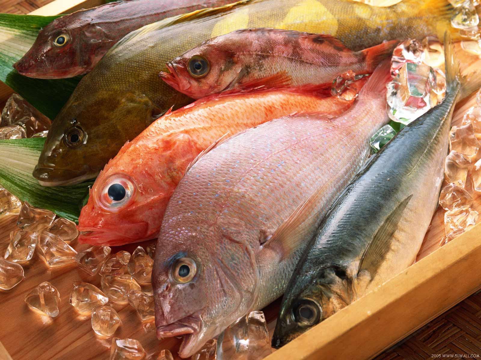 fresh_fish__sea_food_20141222_1043064734