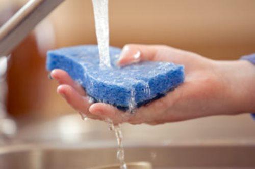 disinfect-sponge-1