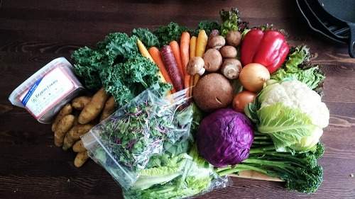 Sales of organic produce delivered to your door 1