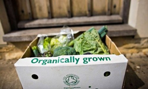 Sales of organic produce delivered to your door 3