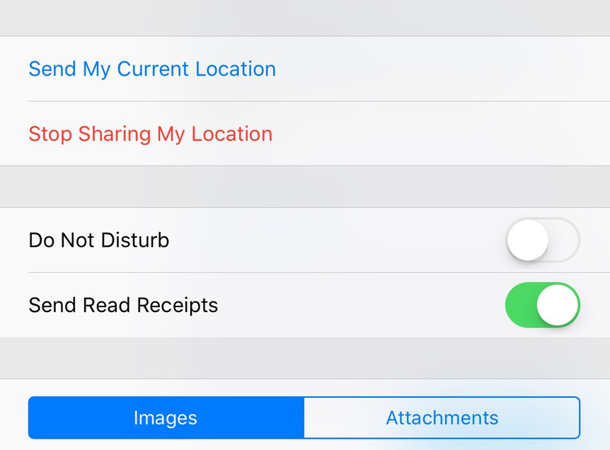 Individual-read-receipts-for-iMessages