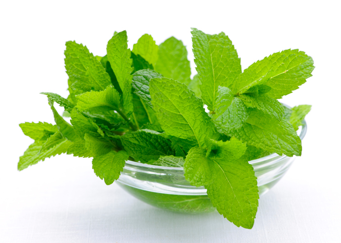 Yoruba Herbs And Their English Names & Uses | Jiji Blog