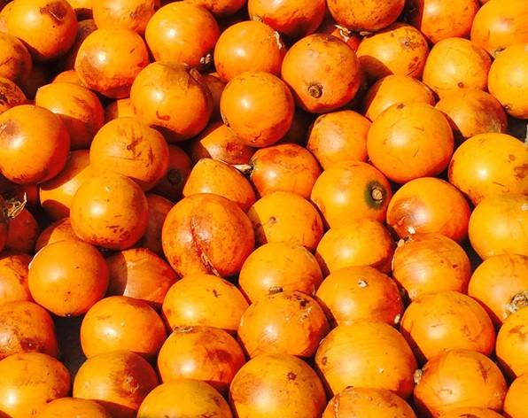 health benefits of African cherry