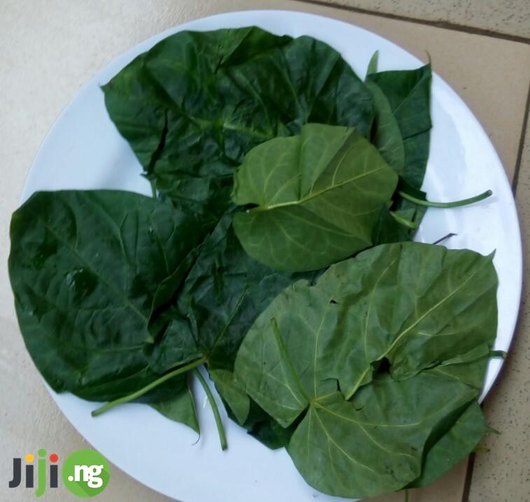 utazi leaves