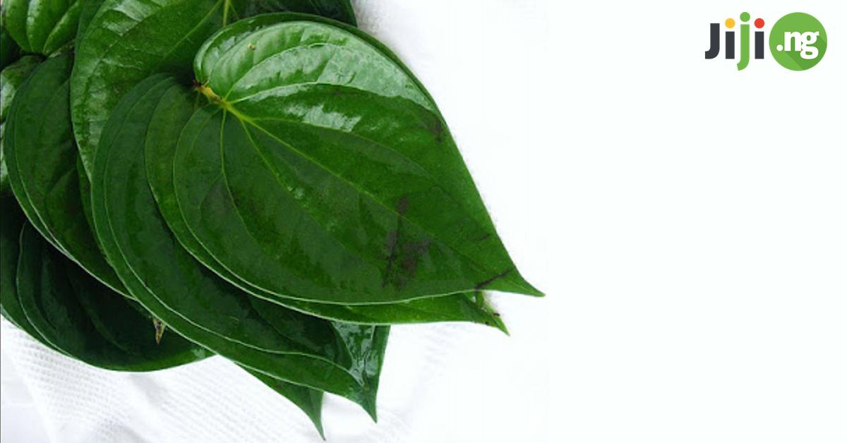Utazi leaf