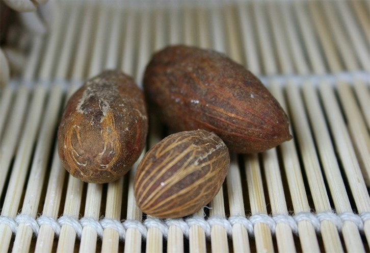 Bitter Kola Nut And Diabetes: Does It Work? | Jiji Blog