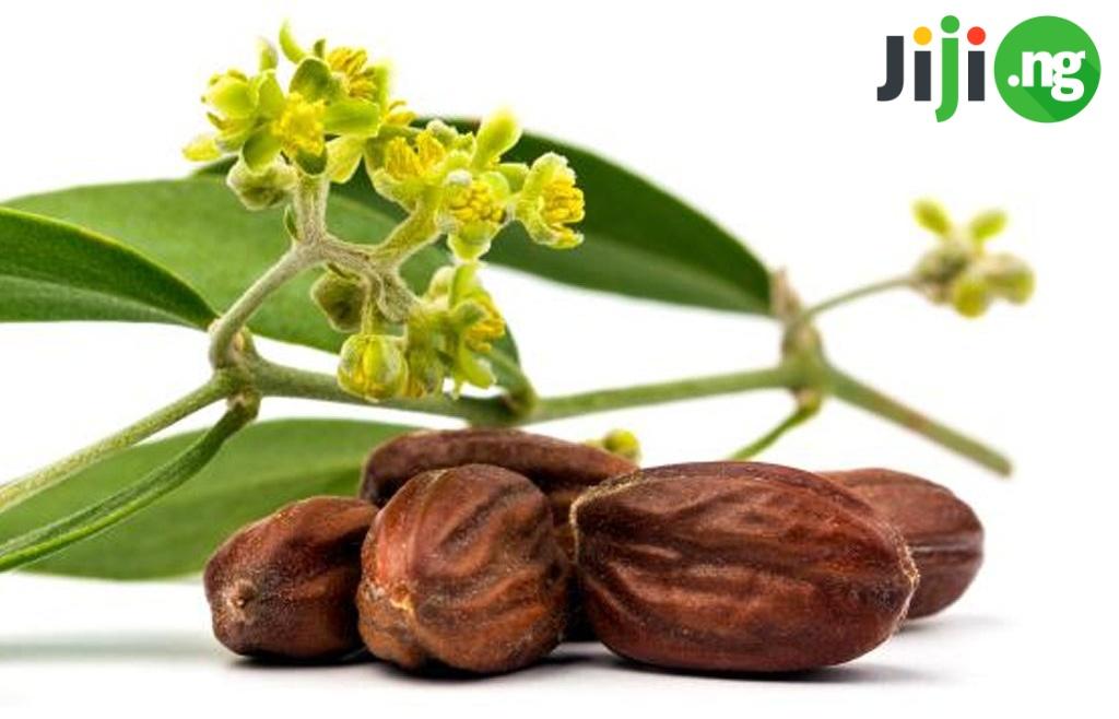 jojoba oil benefits