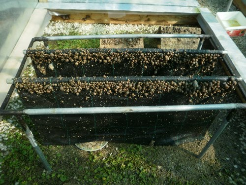 snail farming equipment