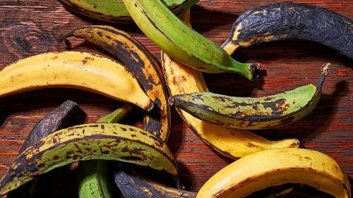 what class of food is plantain